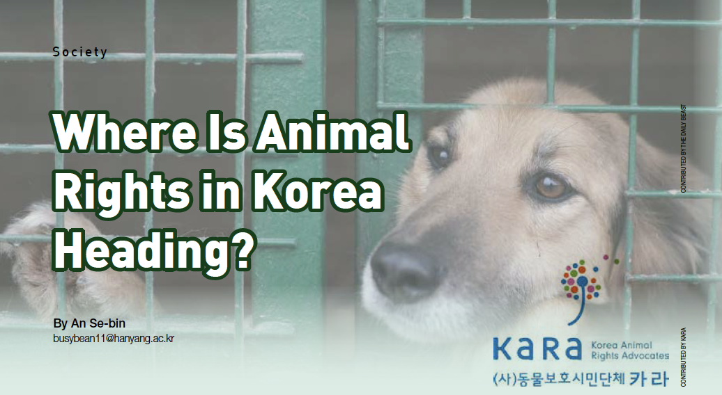 Where Is Animal Rights in Korea Heading?